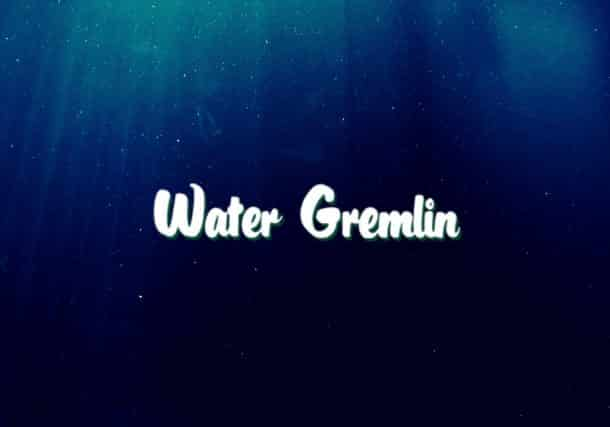 Walmart Announces That It Will Stop Selling Water Gremlin Products